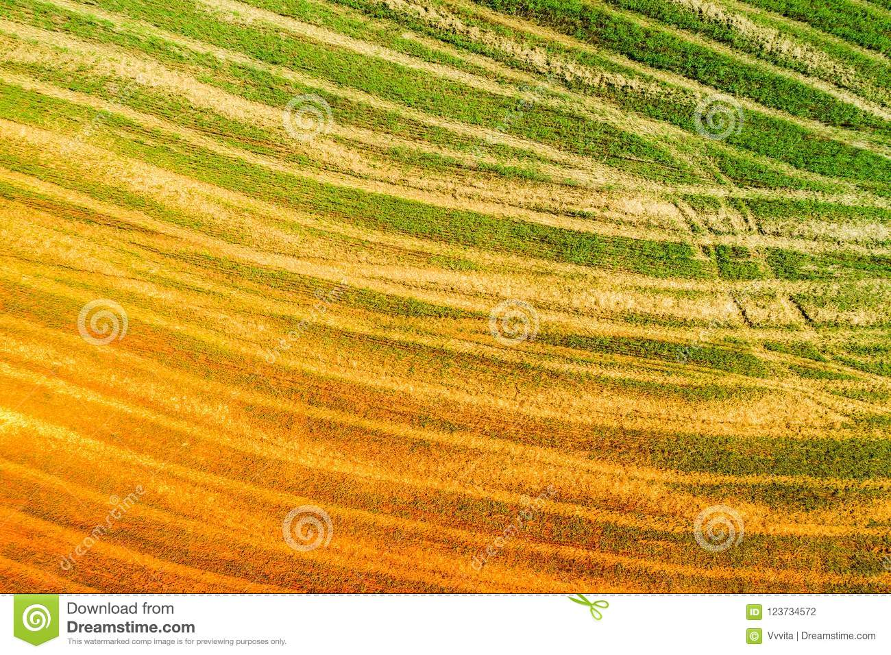 Abstract nature background created from the photo of the beveled field