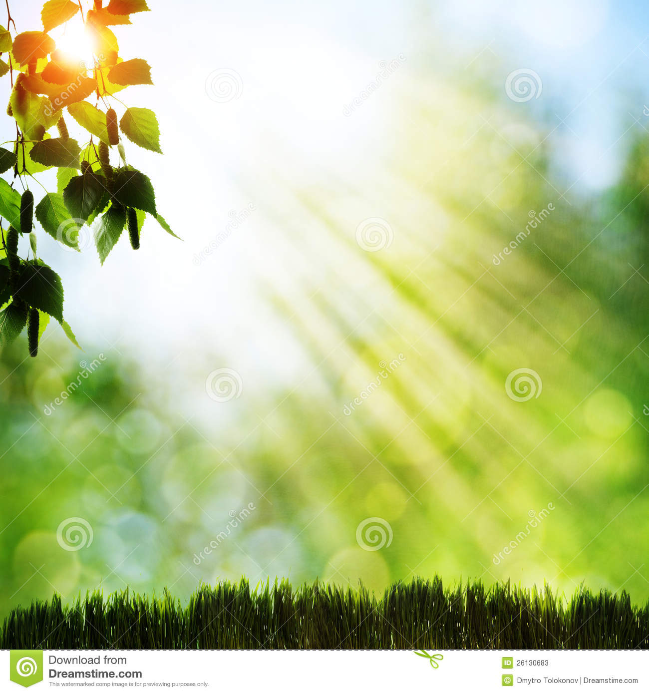 Nature Images 2mb: Abstract Natural Backgrounds Stock Image