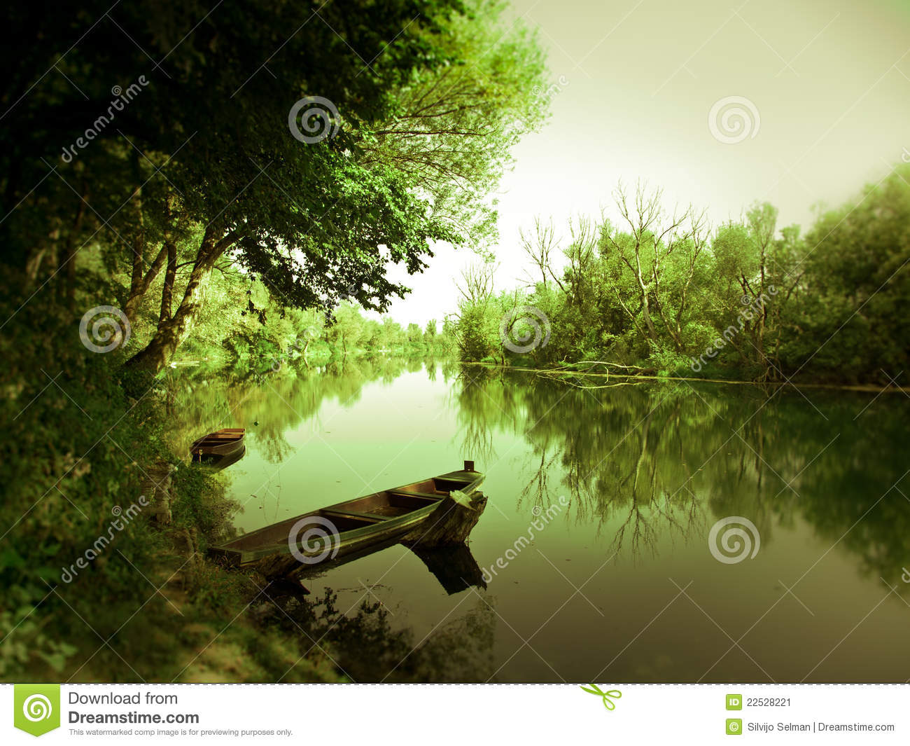 Boat on the river under green shadow