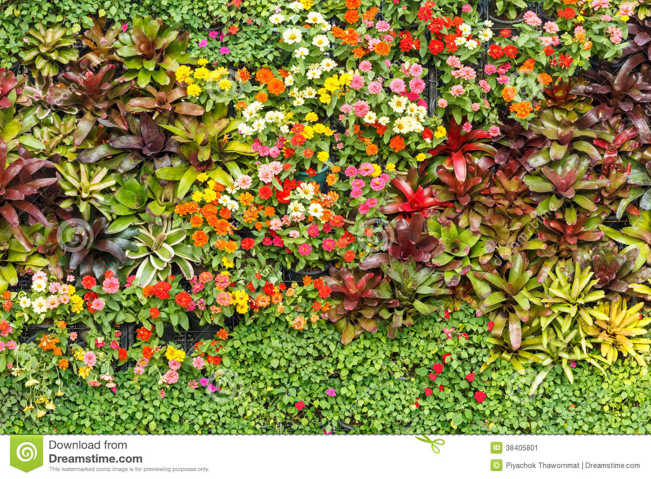 Vertical garden with various tropical plants and flower growing in a