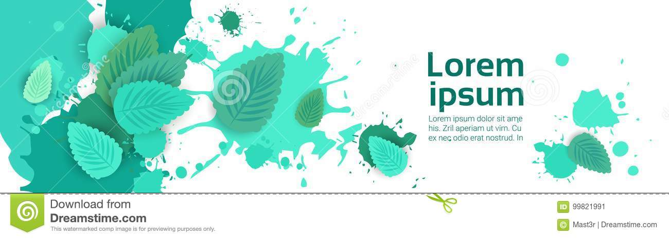 Abstract Paint Splash And Mint Leaf Set Over White Background For Copy Space And Text