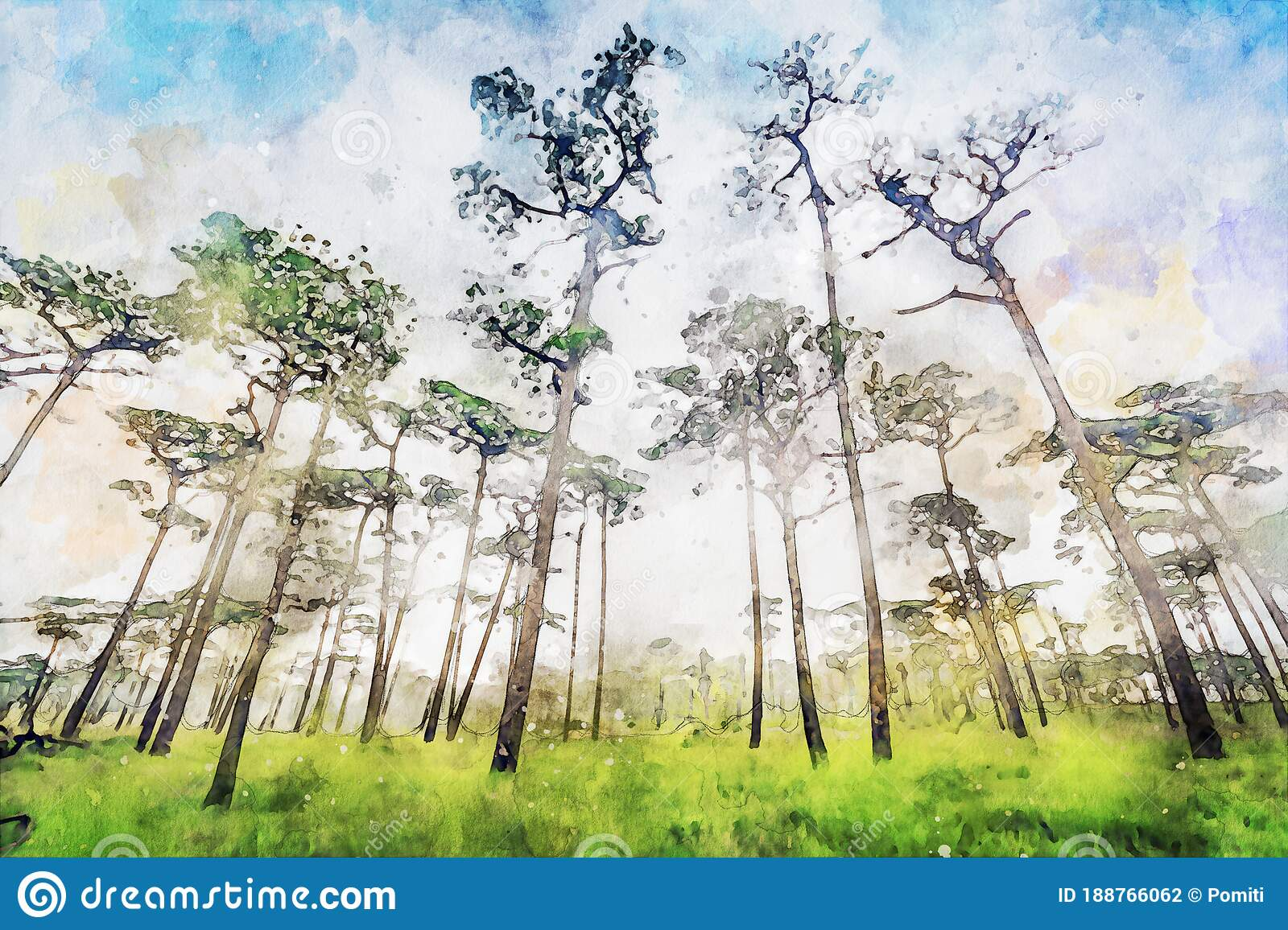 Abstract Painting Of Pine Trees In Forest Nature Landscape Image Digital Watercolor Illustration Art For Background Stock Illustration Illustration Of Wall Texture 188766062