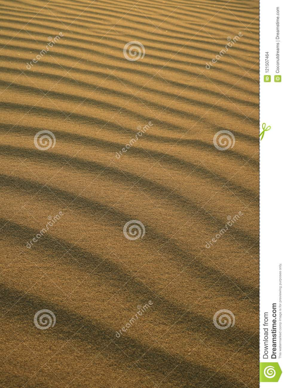 Abstract pattern of desert sand ripples in the evening sunlight at Huacachina sand dune in Peru