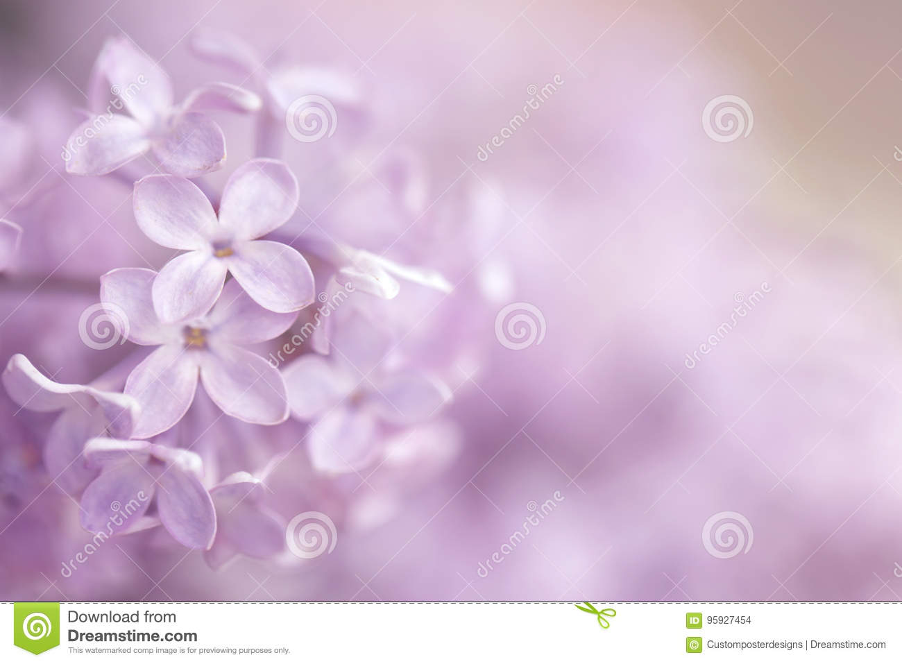 Download An Abstract Pink Purple Floral Background. Stock Photo - Image of horizontal, designed: 95927454