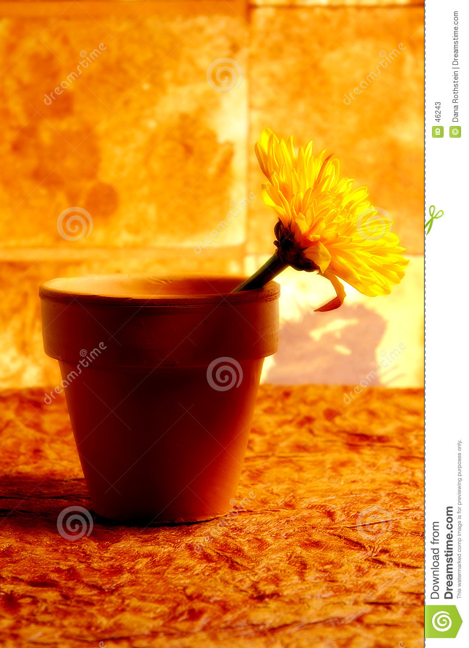 Abstract Potted Flower