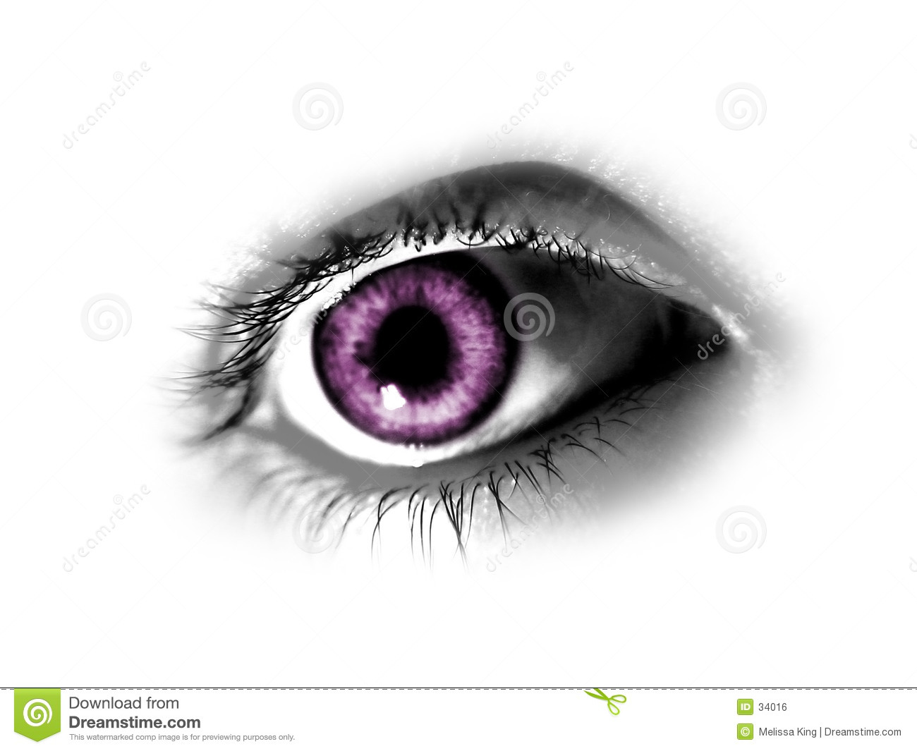 Abstract Purper Oog