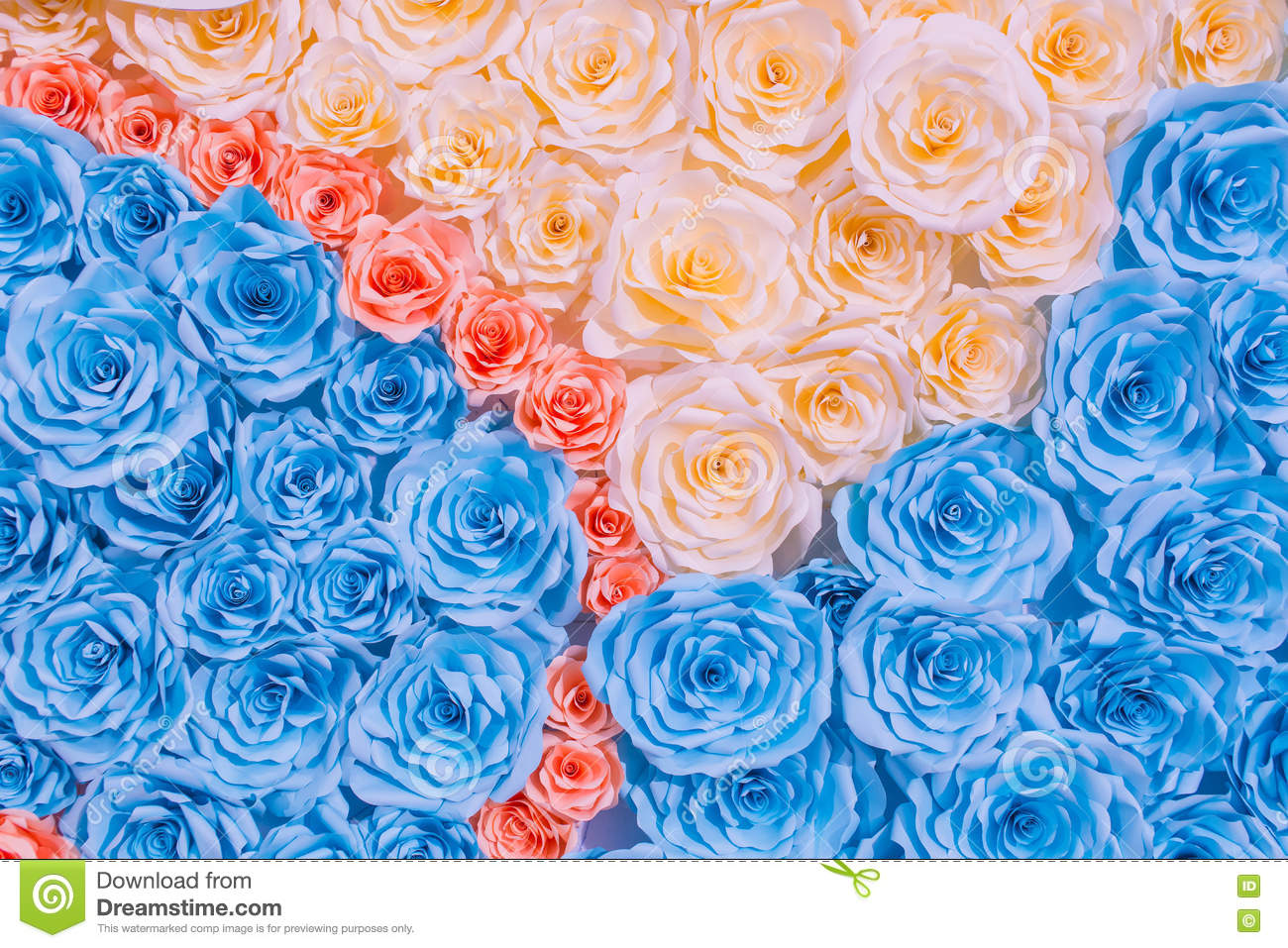 Abstract Rainbow Colourful Beautiful Rose Flower Paper Background