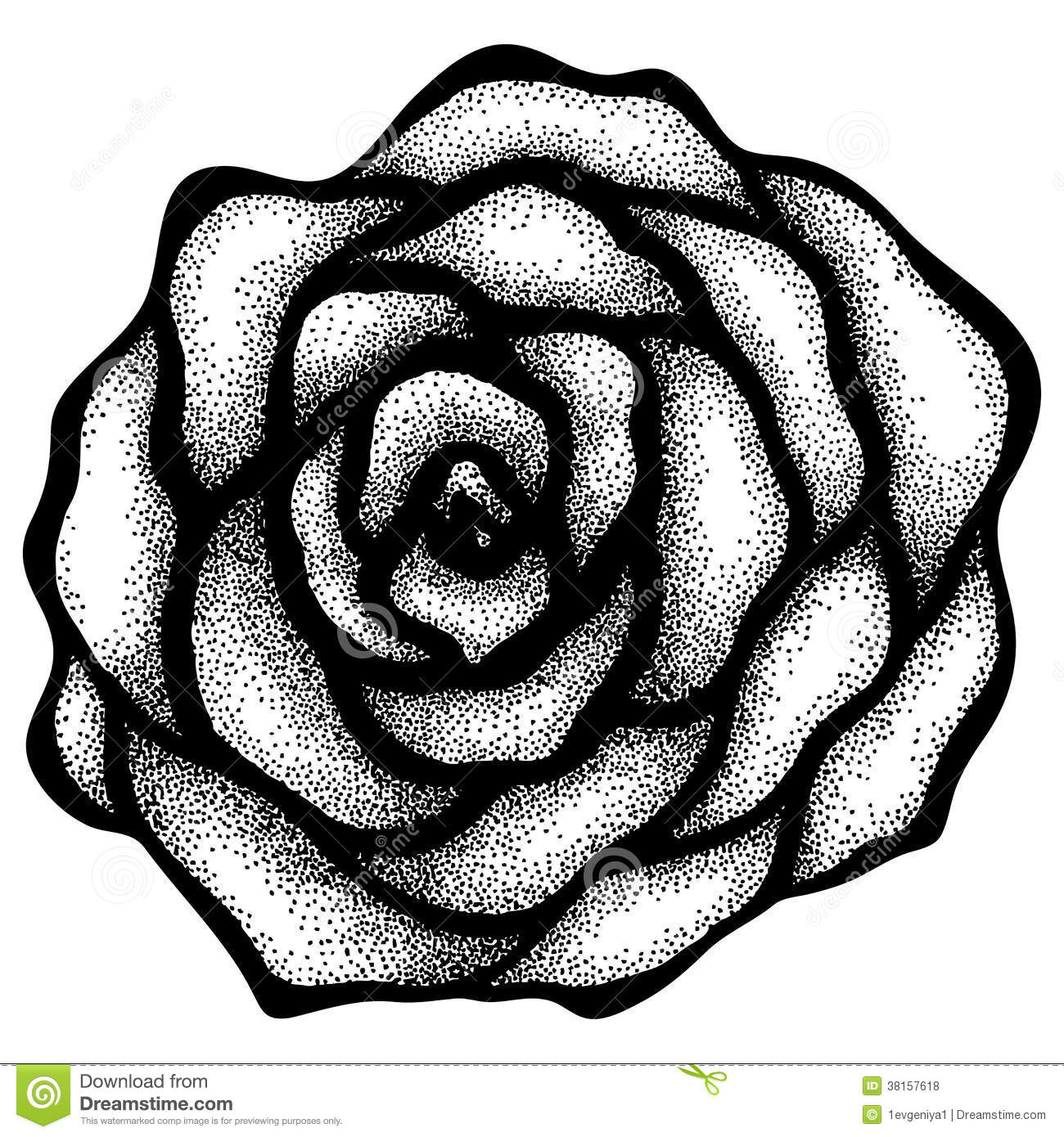 Drawing Lines With Core Graphics : Abstract rose free hand drawing in a graphic style points
