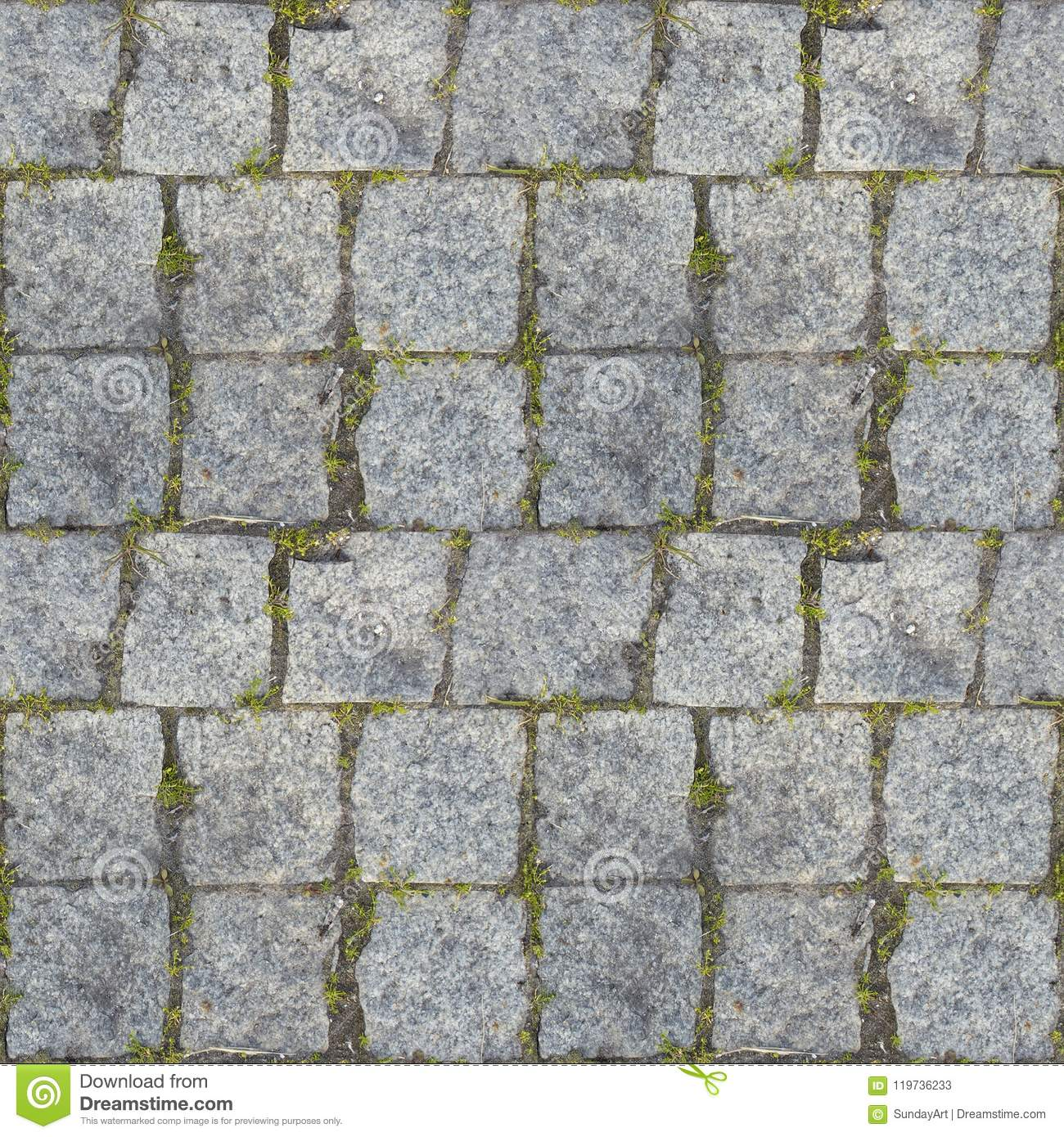 Seamless Photo Texture Of Pavement Tile From Stone With Grass Stock