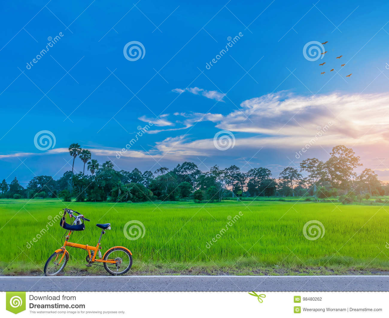 Abstract soft blurred and soft focus the silhouette of paddy rice field with the bicycle, the sunset, the beautiful sky and cloud