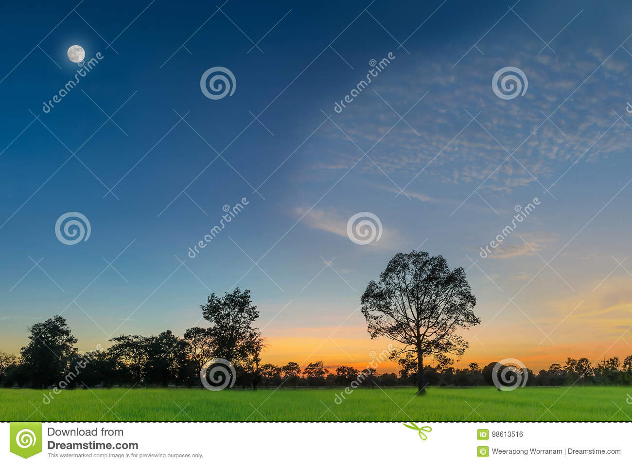 Abstract soft blurred and soft focus silhouette the sunset with the green paddy rice field, the beautiful sky and cloud in