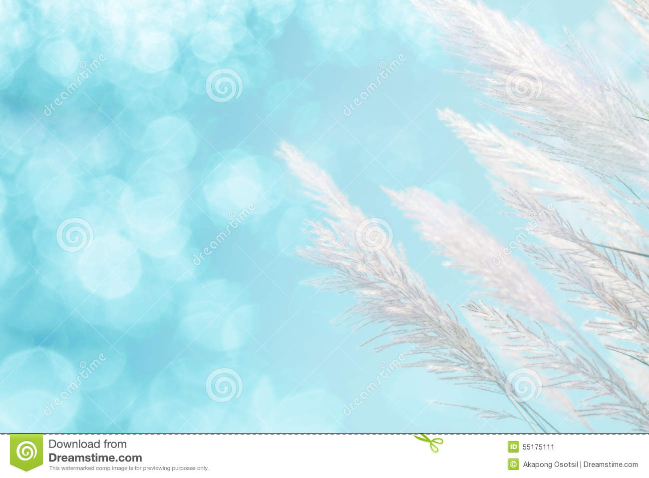 Abstract soft focus of cool blue lighting softness Feather Grass background