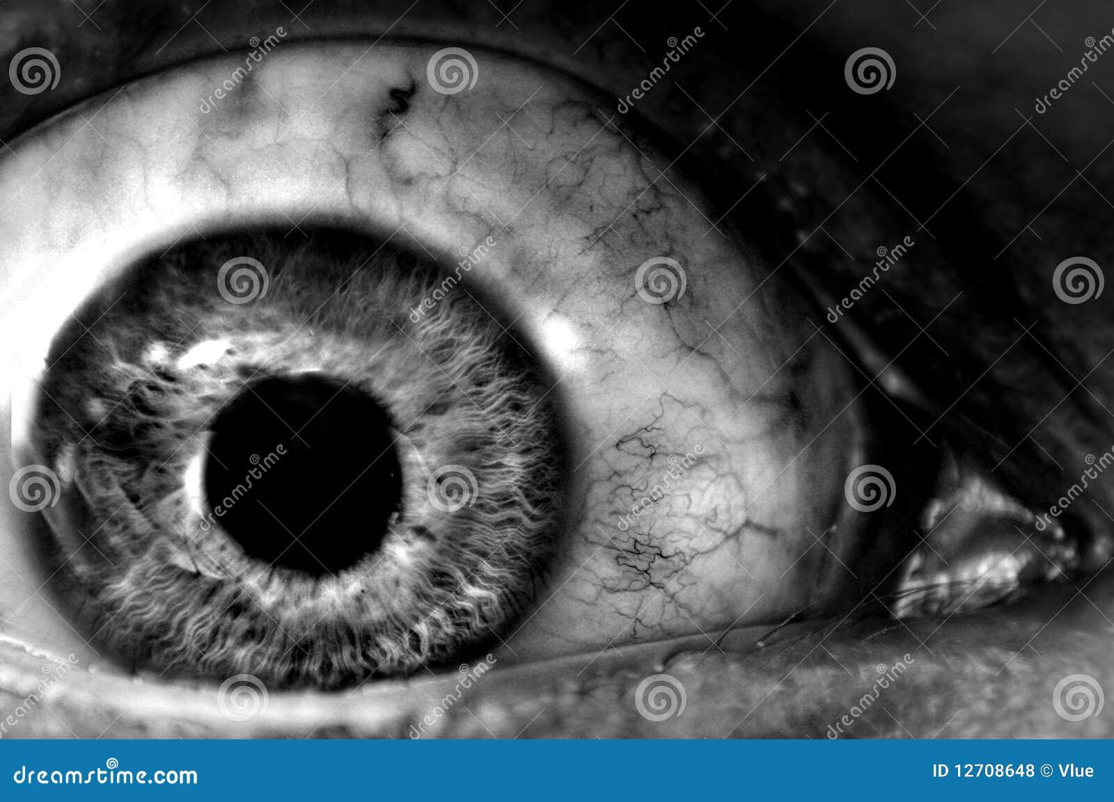 abstract terror eyeball closeup stock photo image 12708648 eyeball vector outline eyeball vector illustration