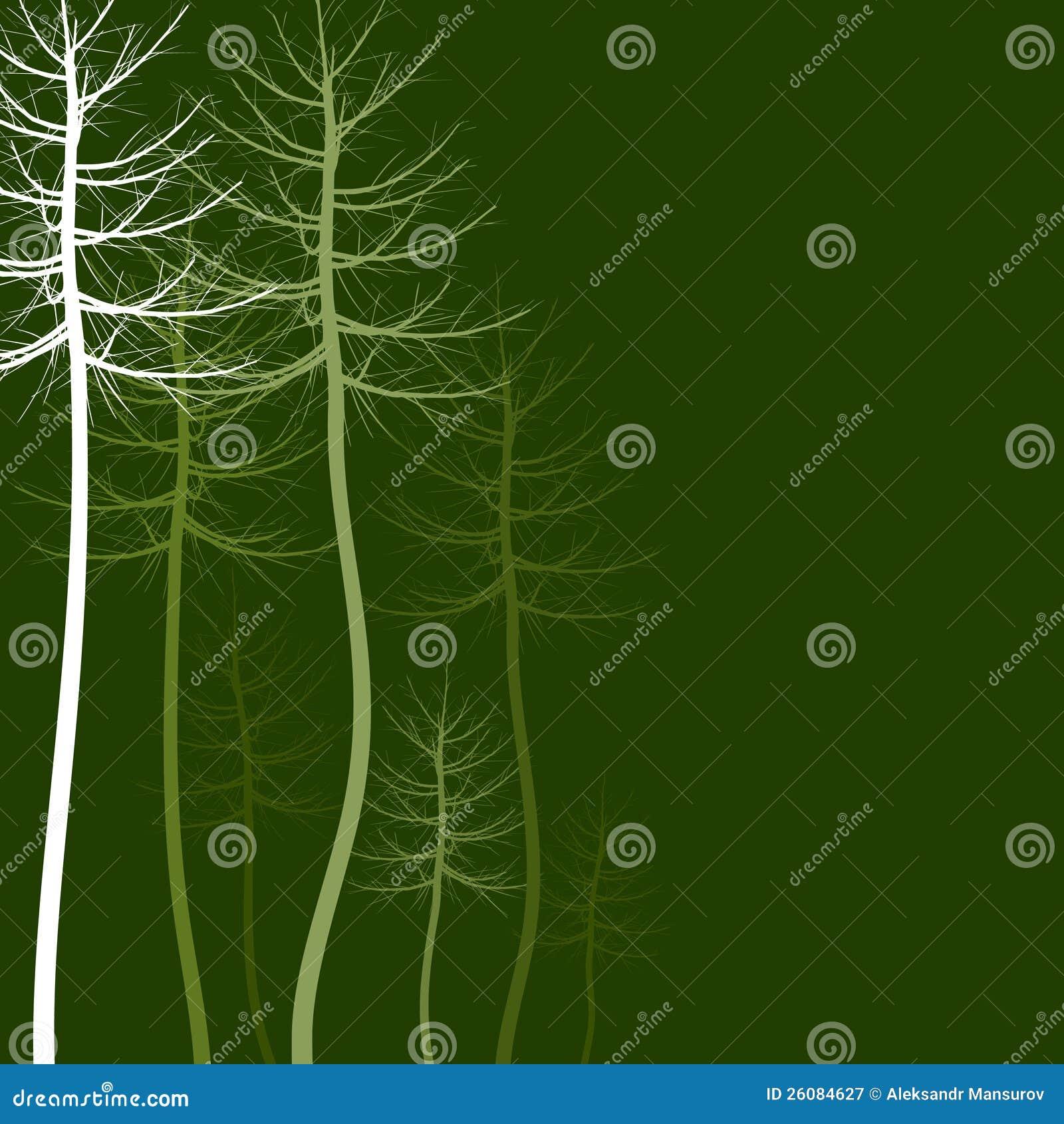 Abstract tree5