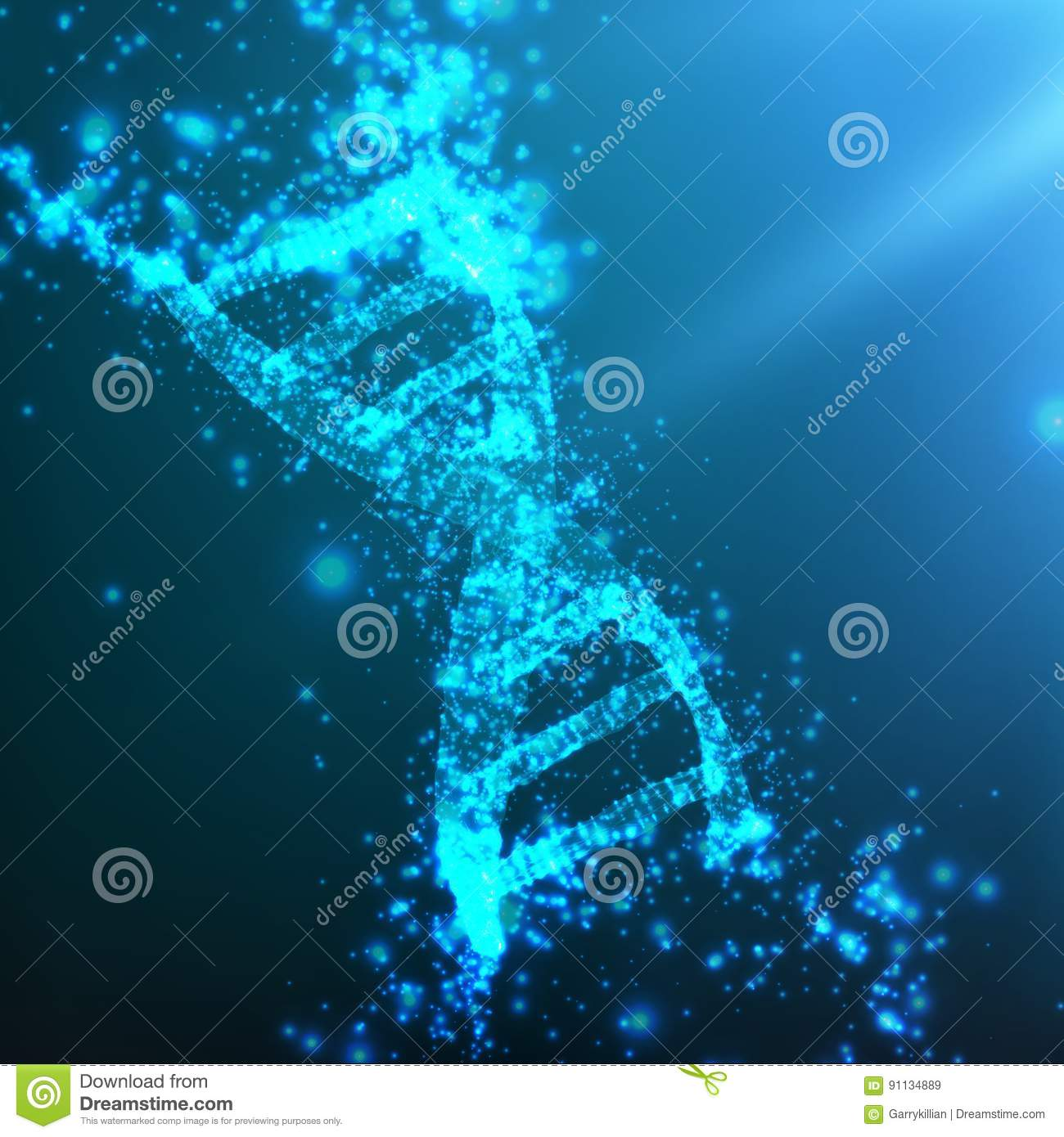 dna the thread of life 1 dna—the thread of life biol 100 – kmarr 1topics this lecture – dna structure  and replication – chapter 10 in essential biology by campbell et al 2lab 7.