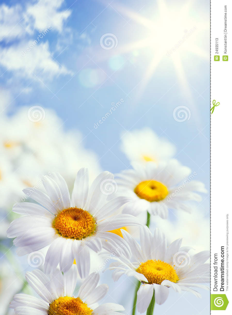 Abstract vintage floral summer background