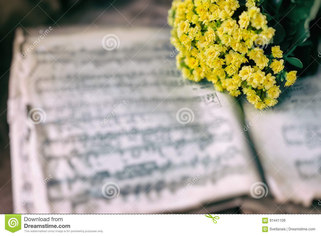 Abstract Vintage Music Background Yellow Flowers On Yellowed Music