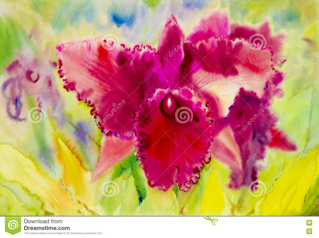 Abstract Watercolor Original Painting Purple Pink Color Of Orchid ...