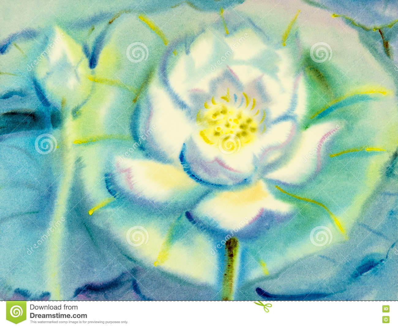 Abstract watercolor original painting white color of lotus flower abstract watercolor original painting white color of lotus flower mightylinksfo