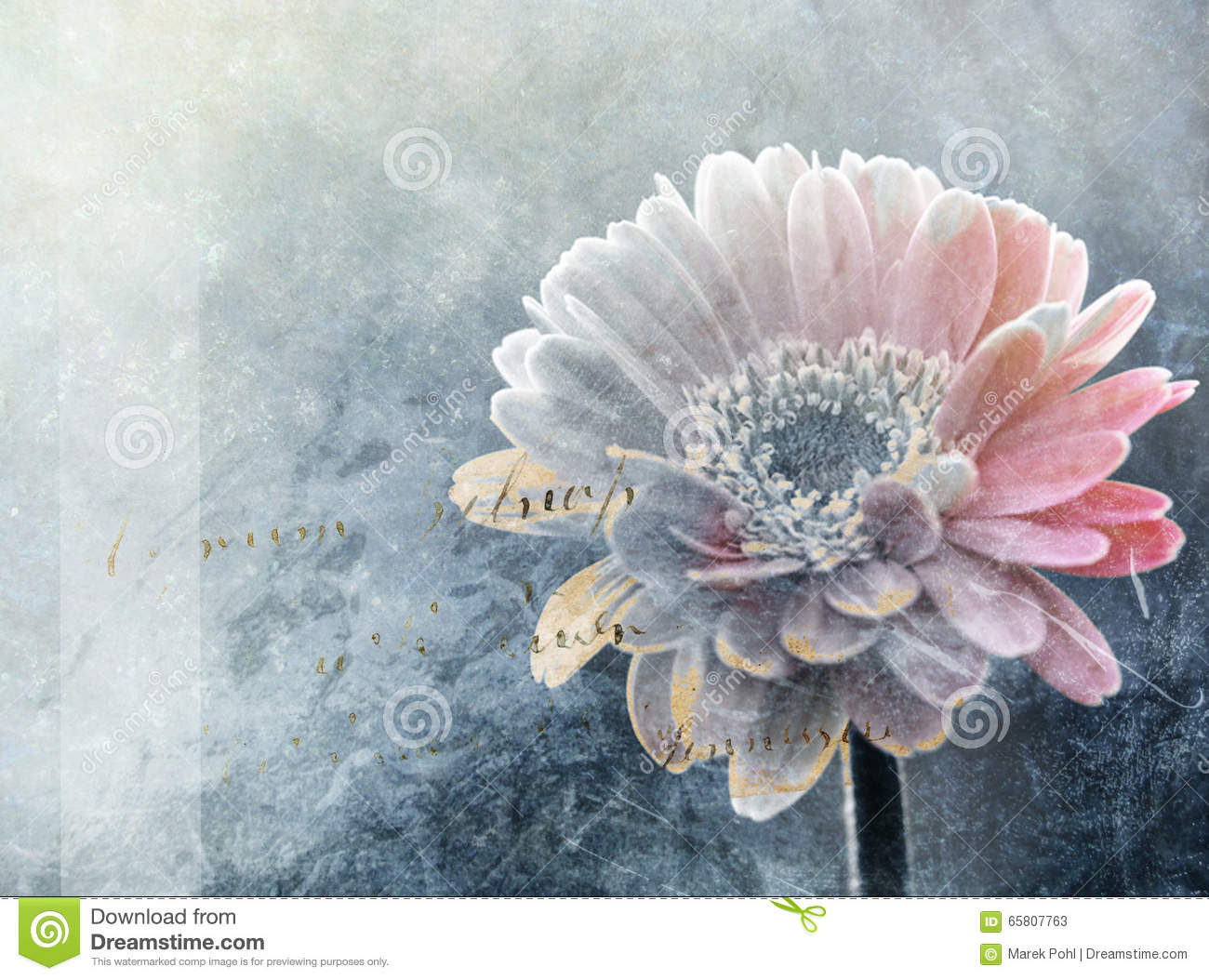 Abstract winter flower digital painting stock image - High resolution watercolor flowers ...