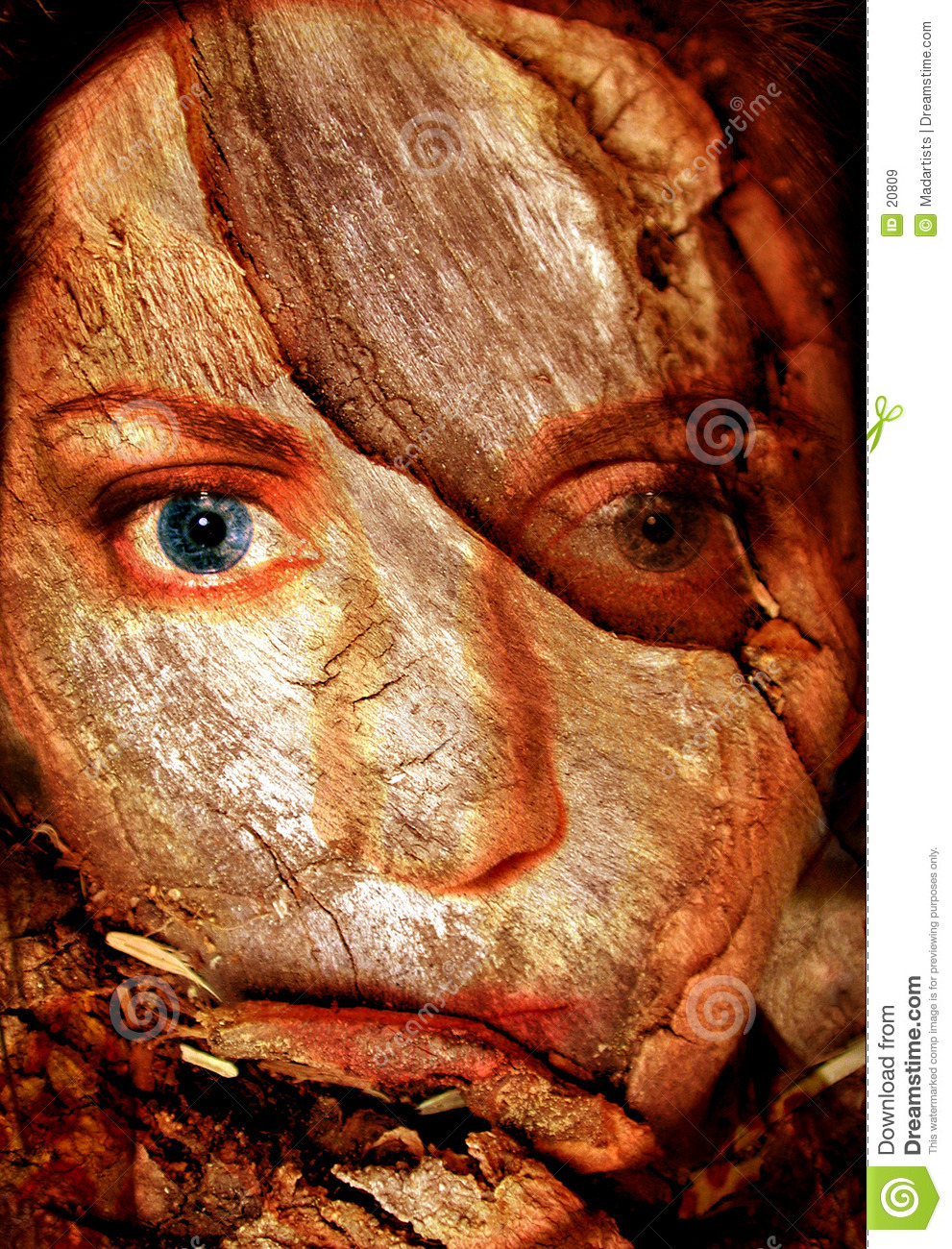Abstract Woman Cracked Face