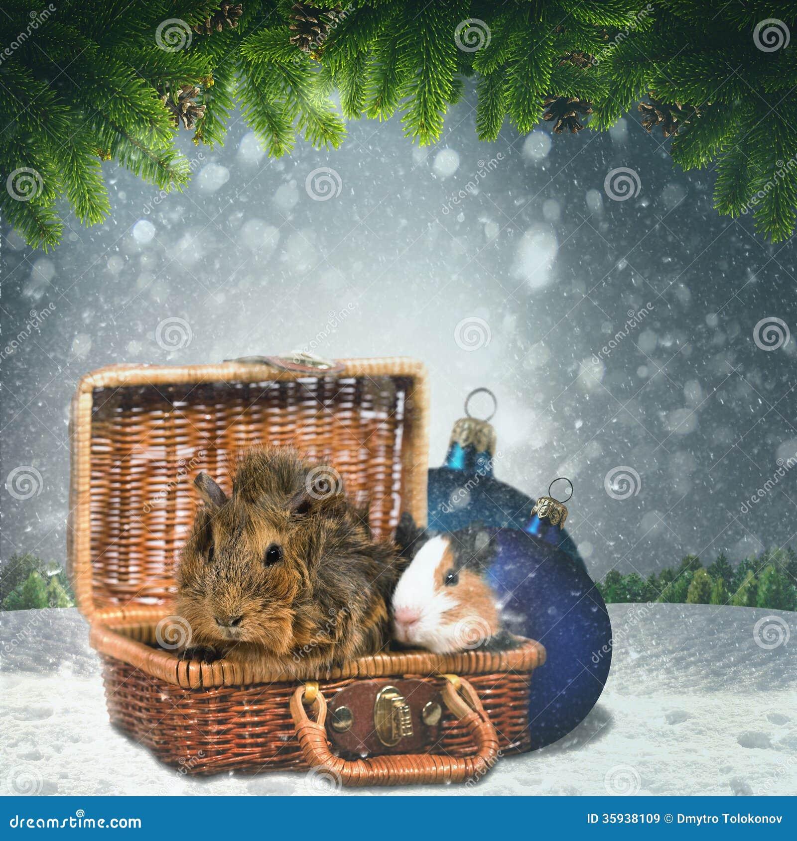 Abstracte de winter en Kerstmisachtergronden