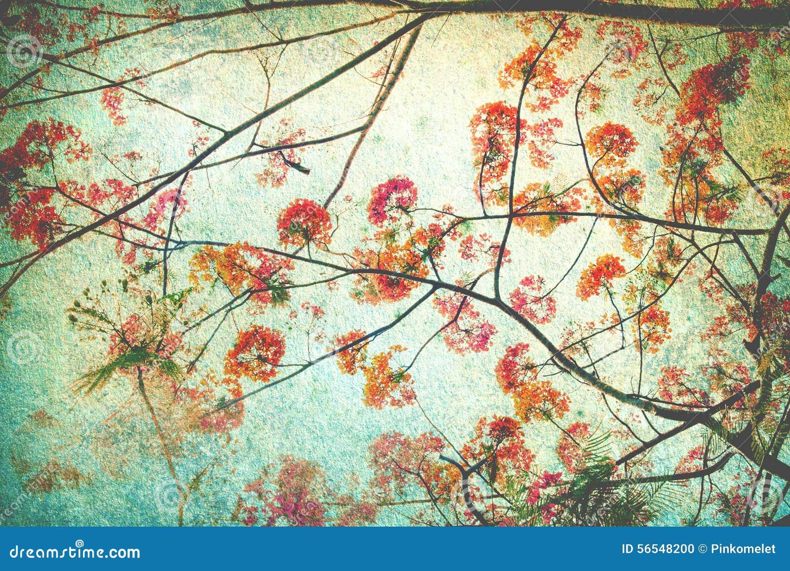 Abstracte die retro achtergrond van Flam-boyant of pauwbloemen door grungetextuur worden gefiltreerd, Chinese stijl