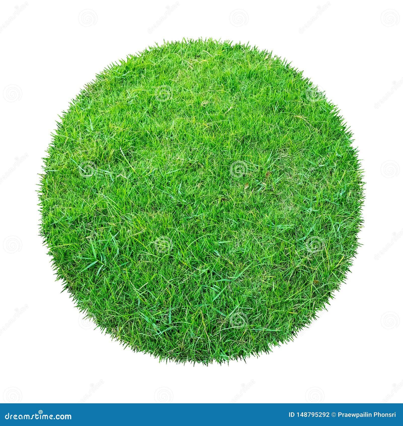 Abstracte groene grastextuur voor achtergrond Patroon van het cirkel het groene gras dat op witte achtergrond met het knippen van