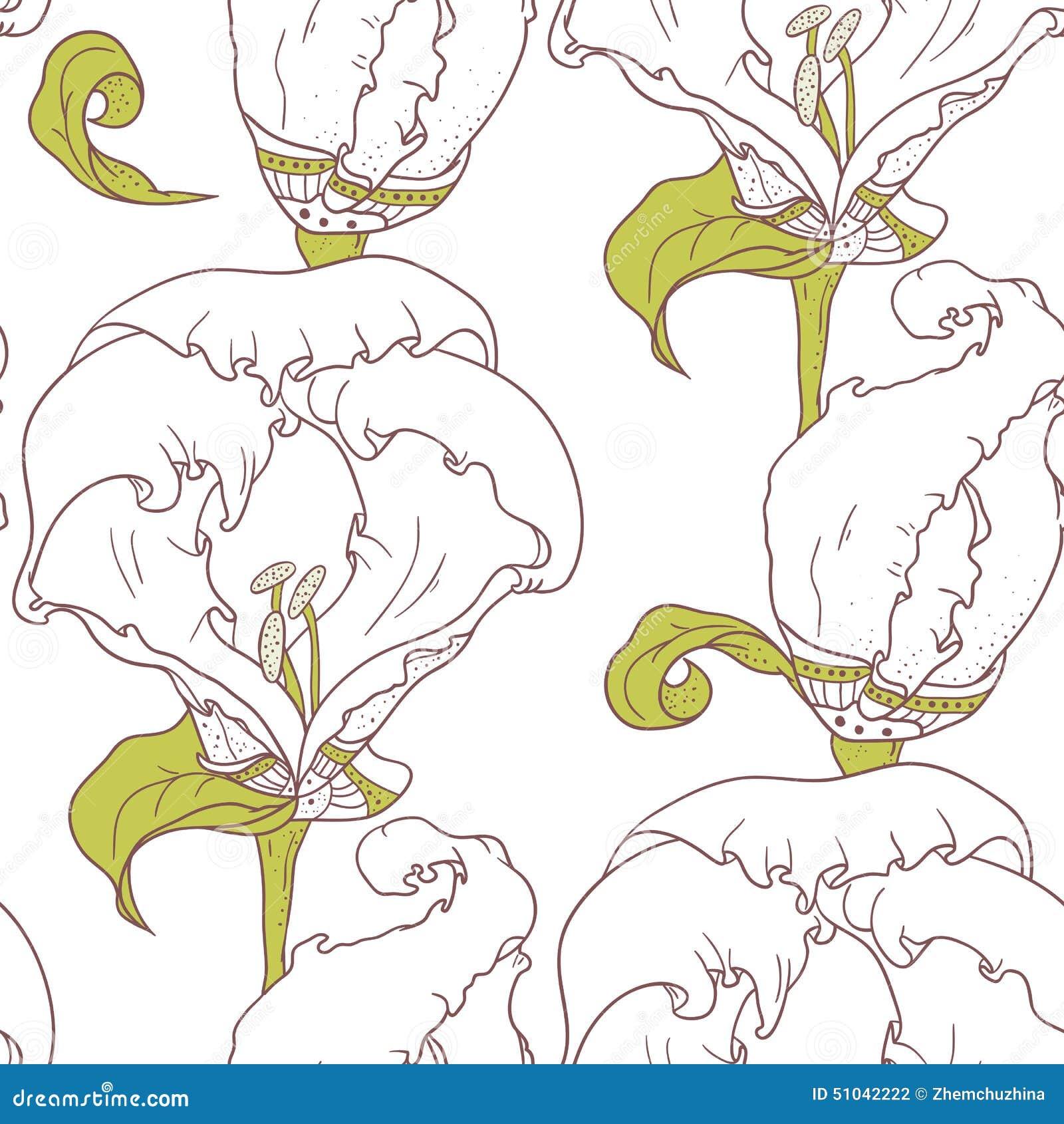 Abstrakcjonistycznego konturu kwiecisty bezszwowy wzór z ręką rysującą kwitnie