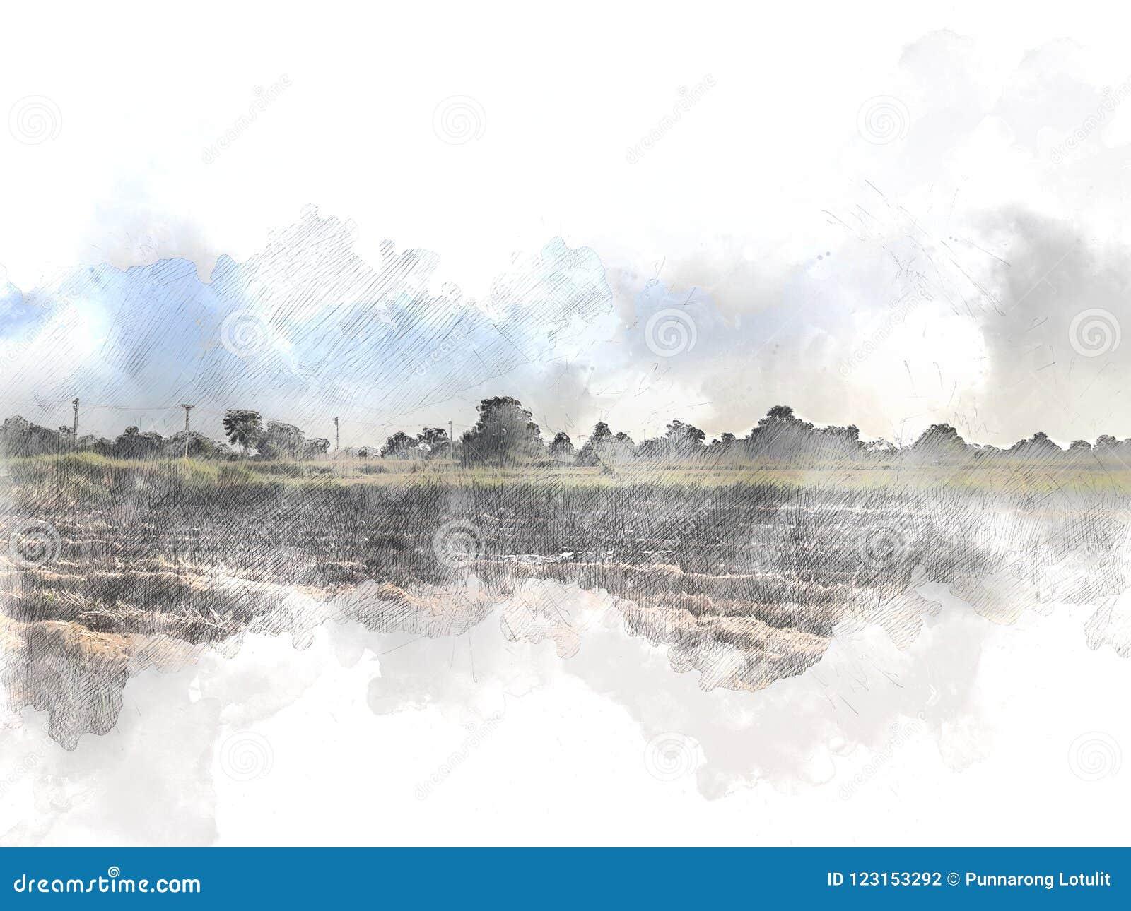 Abstrakcjonistyczny piękny drzewo i pole na kolorowym akwarela obrazu tle