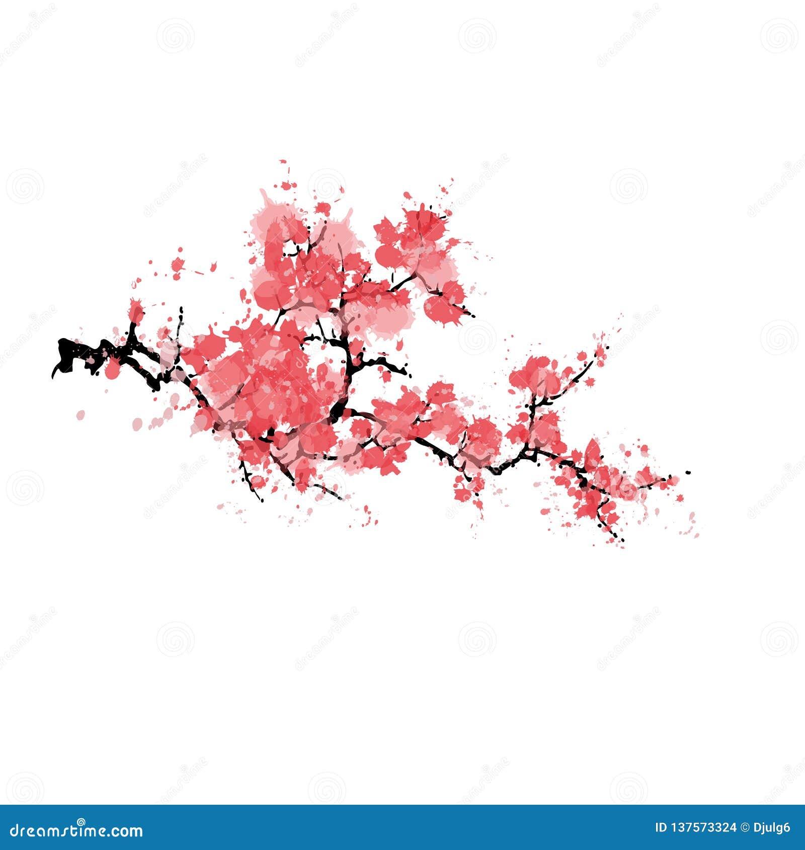 Abstrakcjonistyczny Sakura okwitnięcie odizolowywający na białym tle