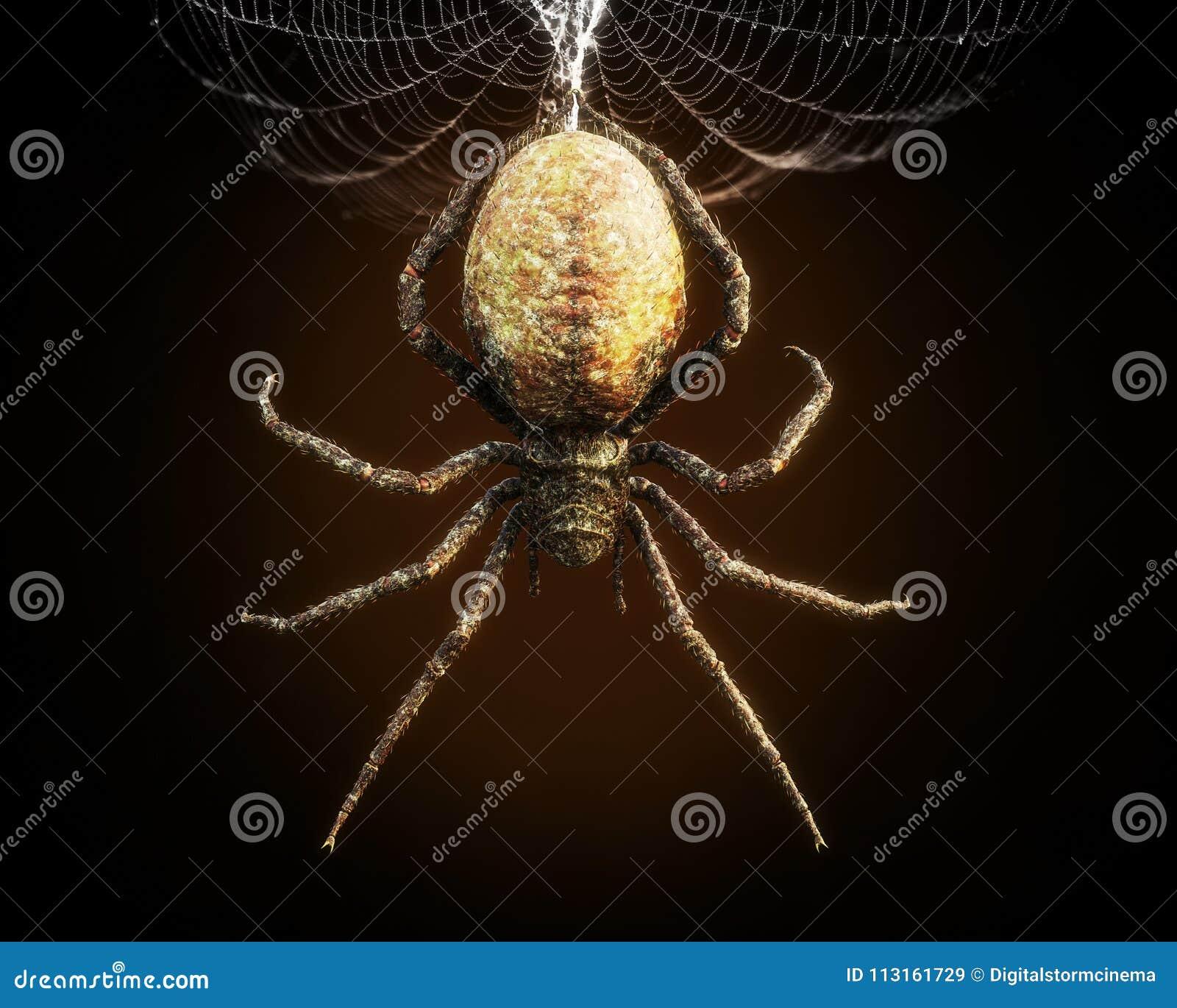 Abstrakcjonistyczny zbliżenie ogromny pająk dynda od swój sieci