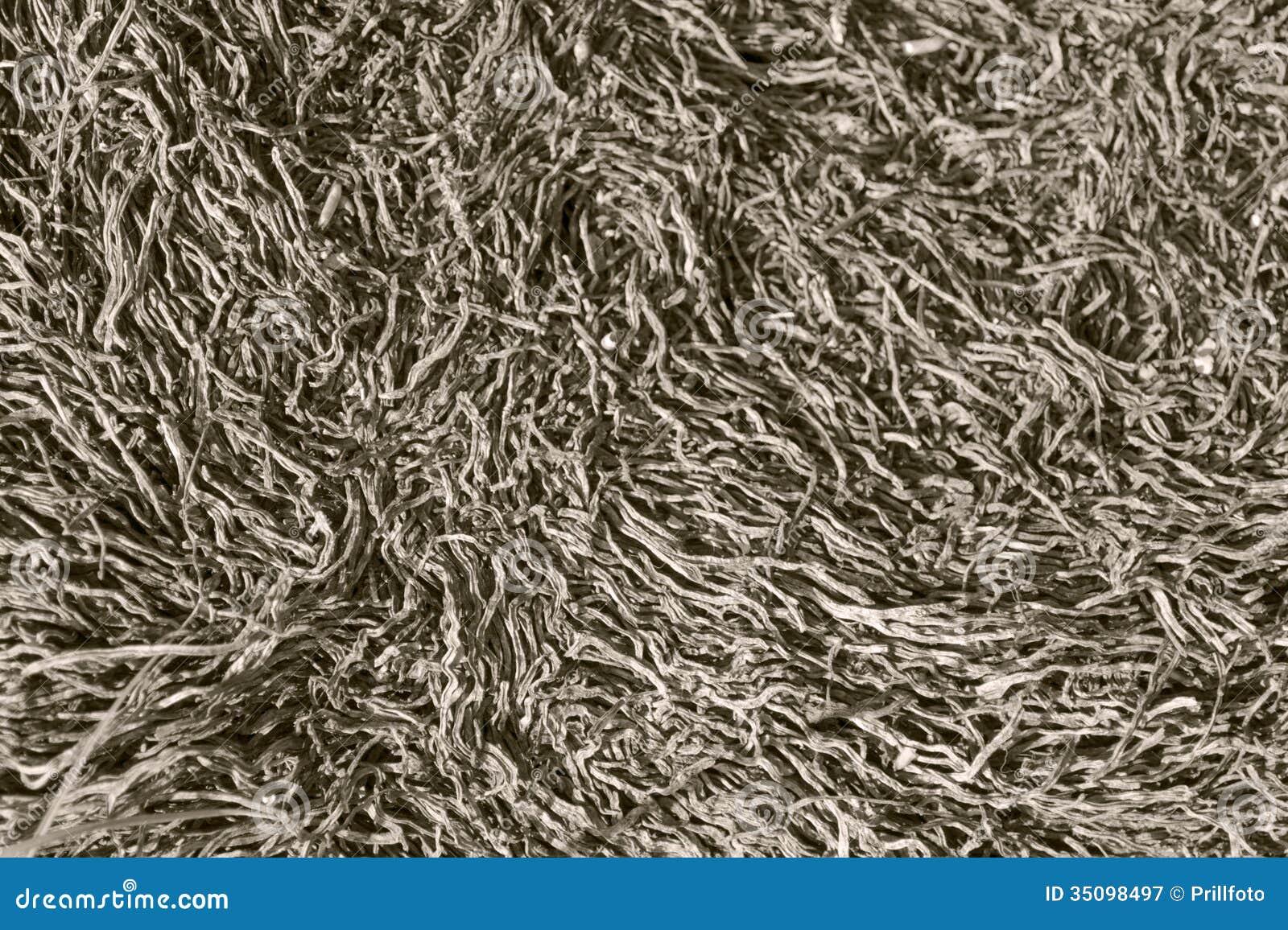 Abstraktów susi stipes