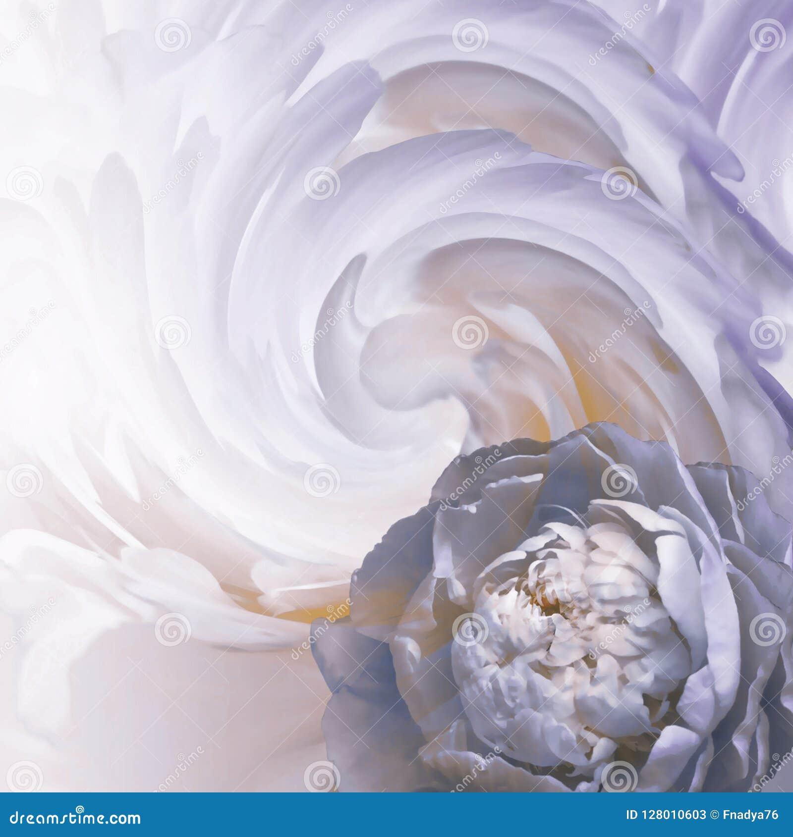 Abstrakt blom- blått-vit-lilor bakgrund En blomma av ett ljus - blå pion på en bakgrund av vridna kronblad greeting lyckligt nytt
