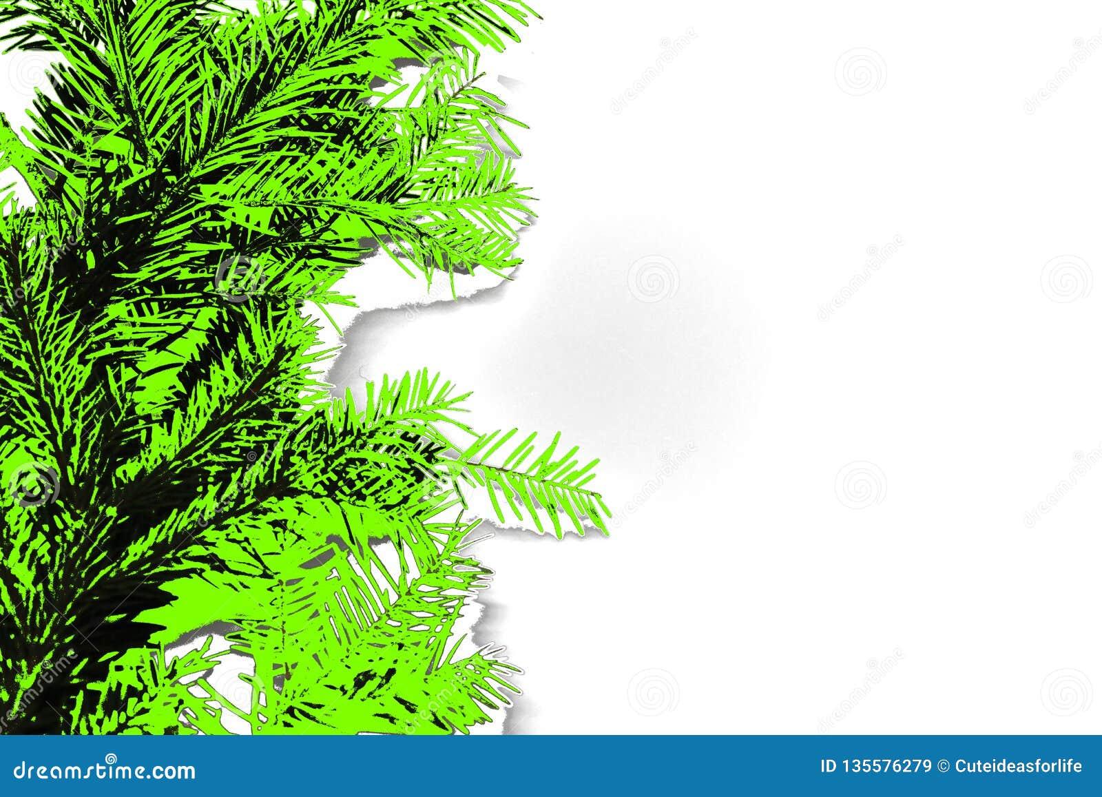 Abstrakt foto av barrträds- filialer i grön färg för ufo