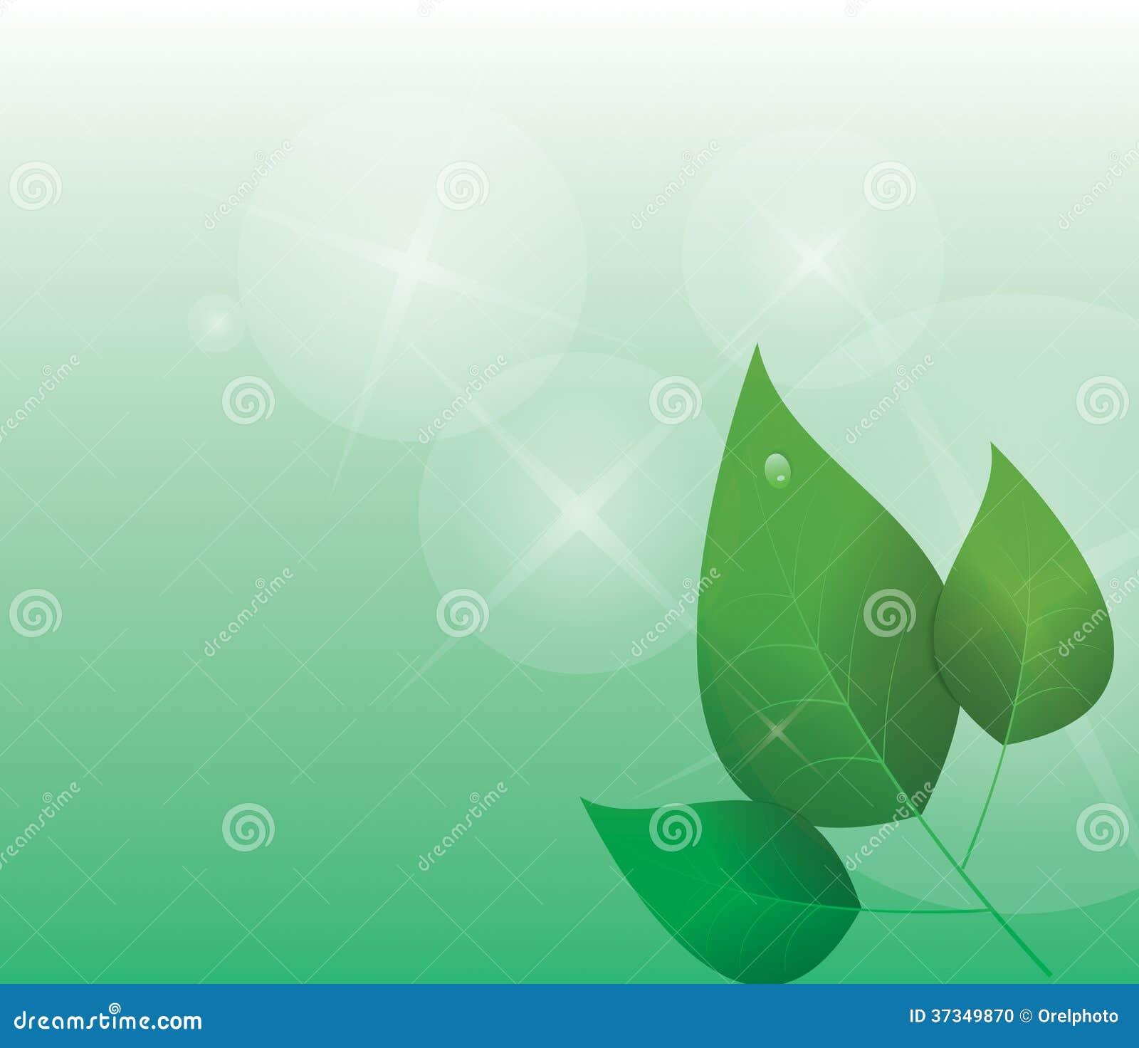 Abstrakt grön bakgrund med sidor