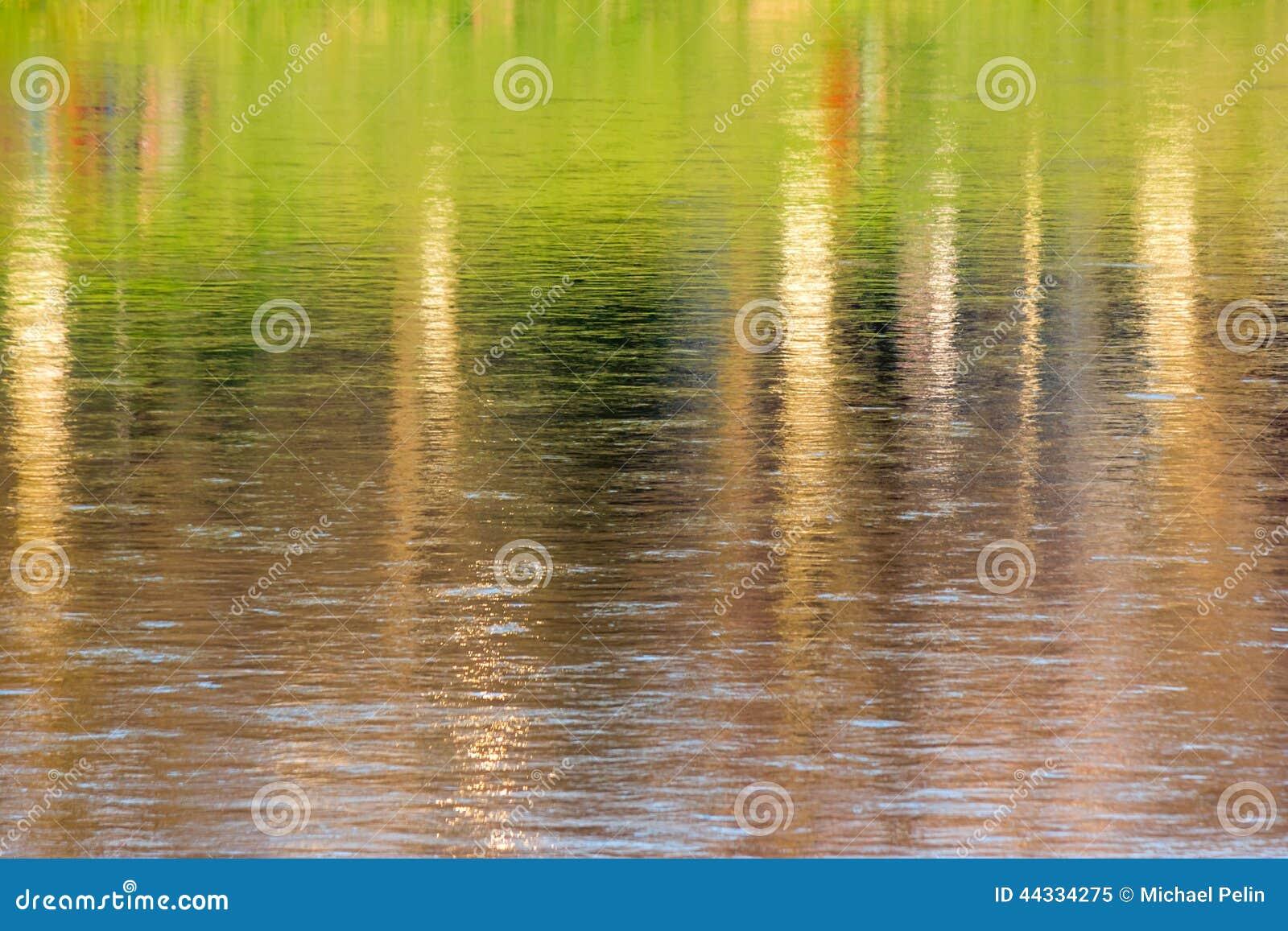 Abstrakt höstträdreflexion i vatten