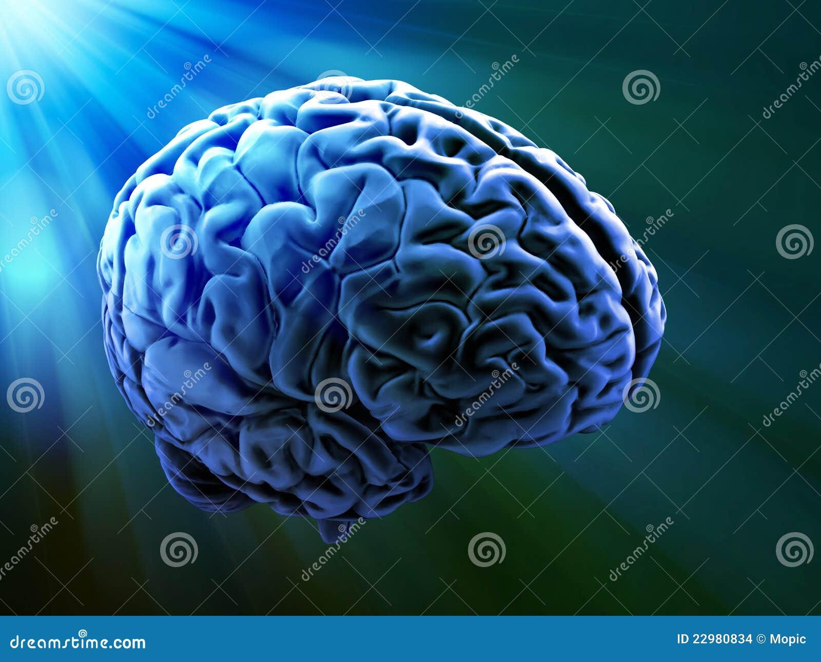 Abstrakt hjärnhuman