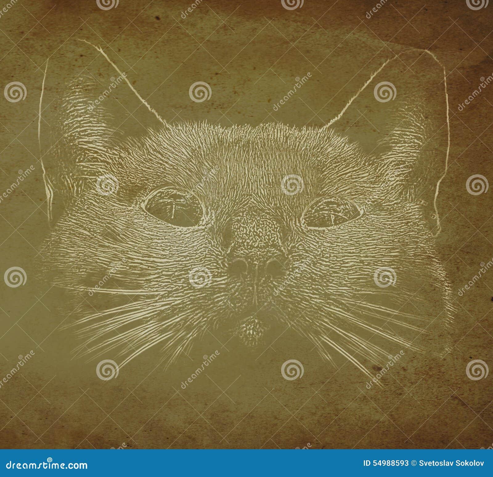 Abstrakt kattstående