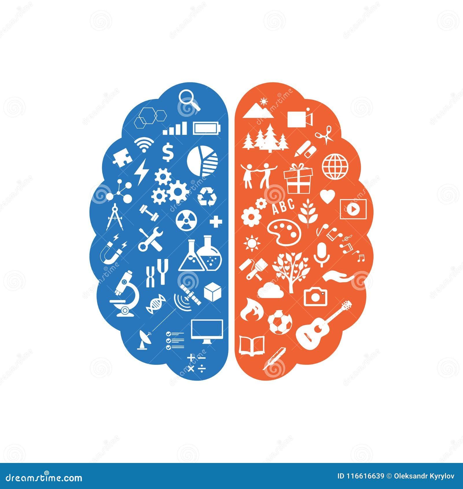 Abstrakt mänsklig hjärna med symbolerna av konst och vetenskap Det lämnade begreppet av arbete och rätsidor av den mänskliga hjär