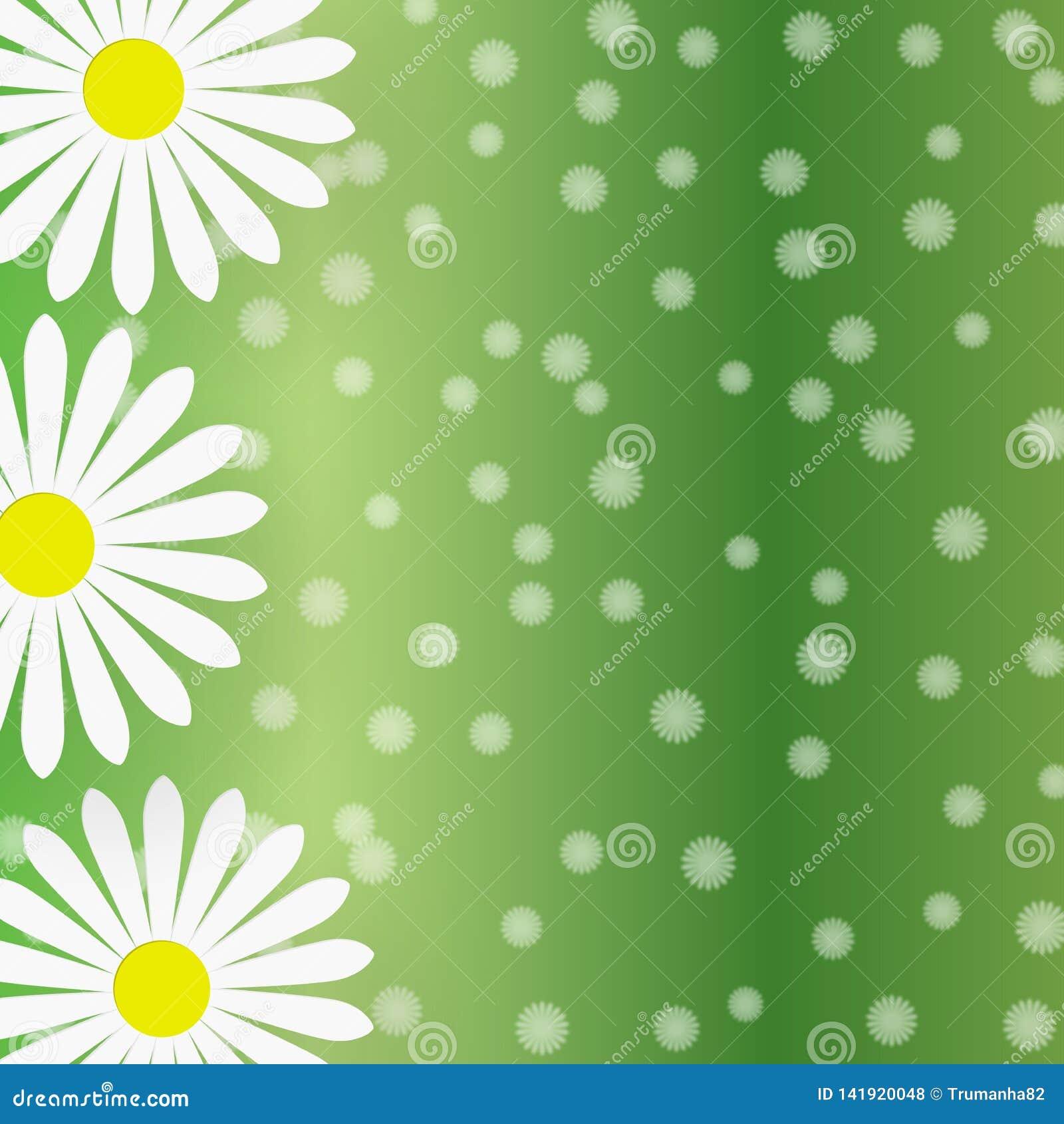 Abstrakta vita Daisy Flowers i Gradated gräsplanbakgrund