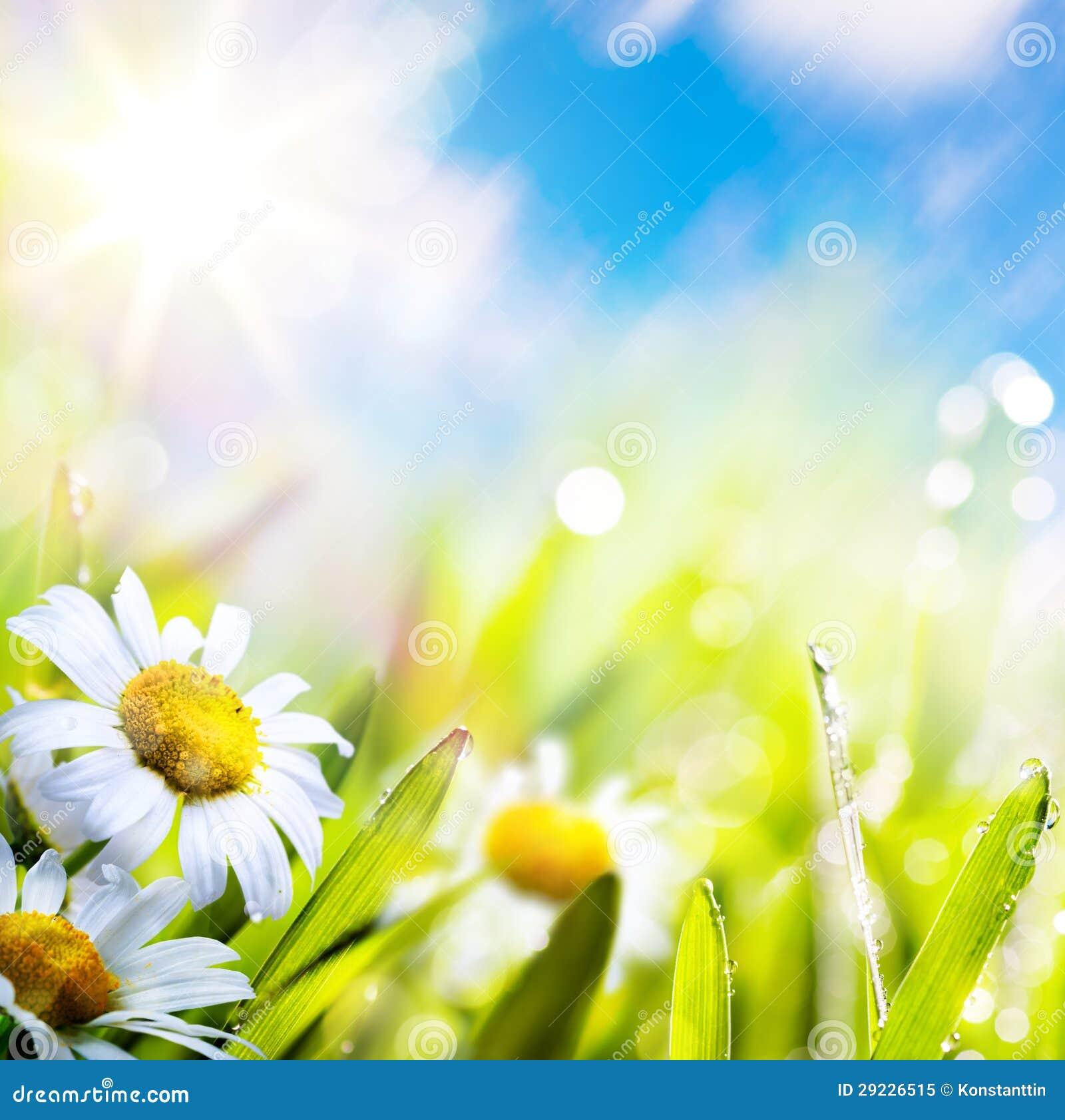 Abstrakte Blume springr Hintergrund der Kunst im Gras auf Sonnehimmel