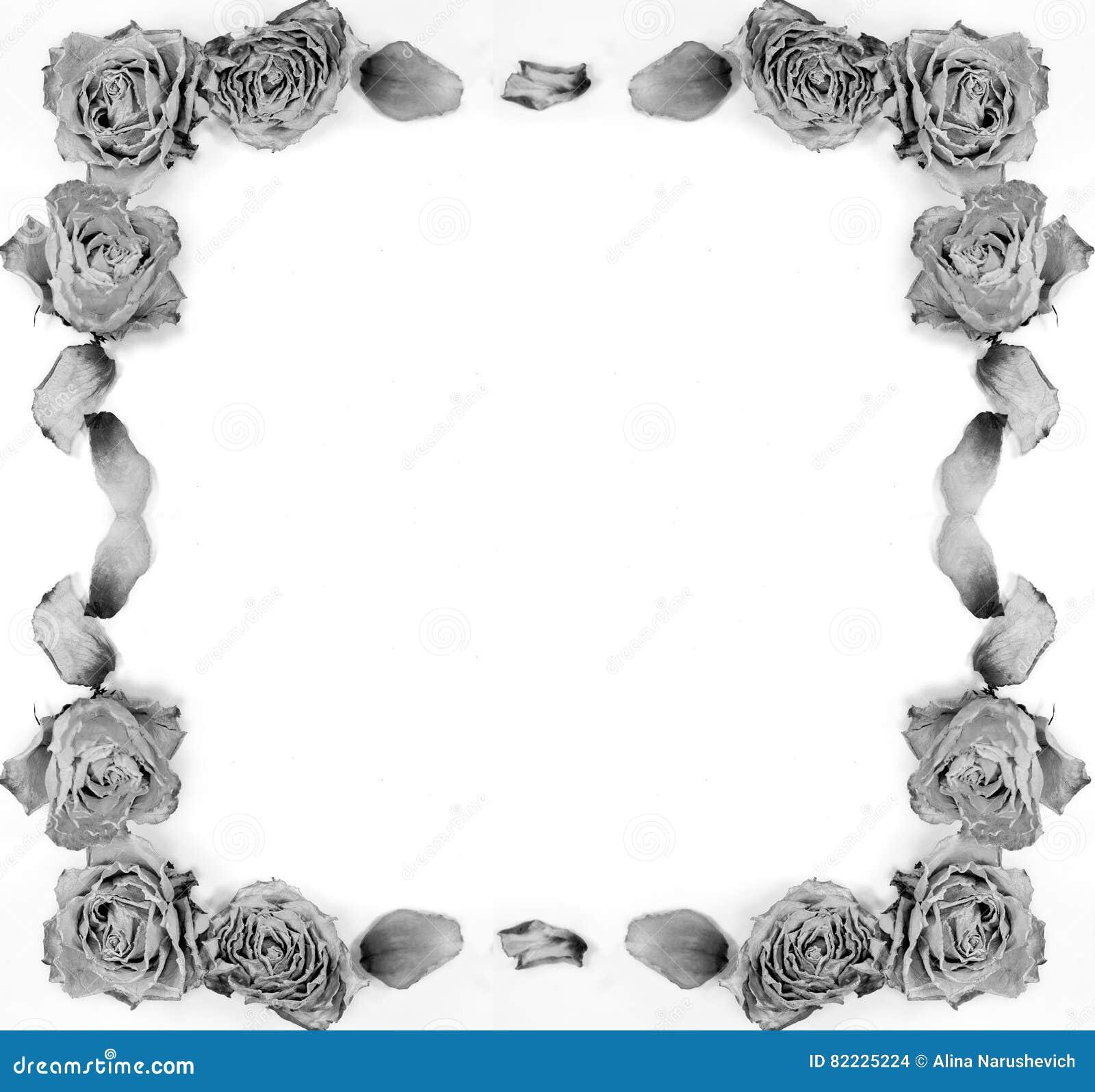 Abstrakte Dekoration - Getrocknete Rosen, Blumenblätter, Rahmen Für ...