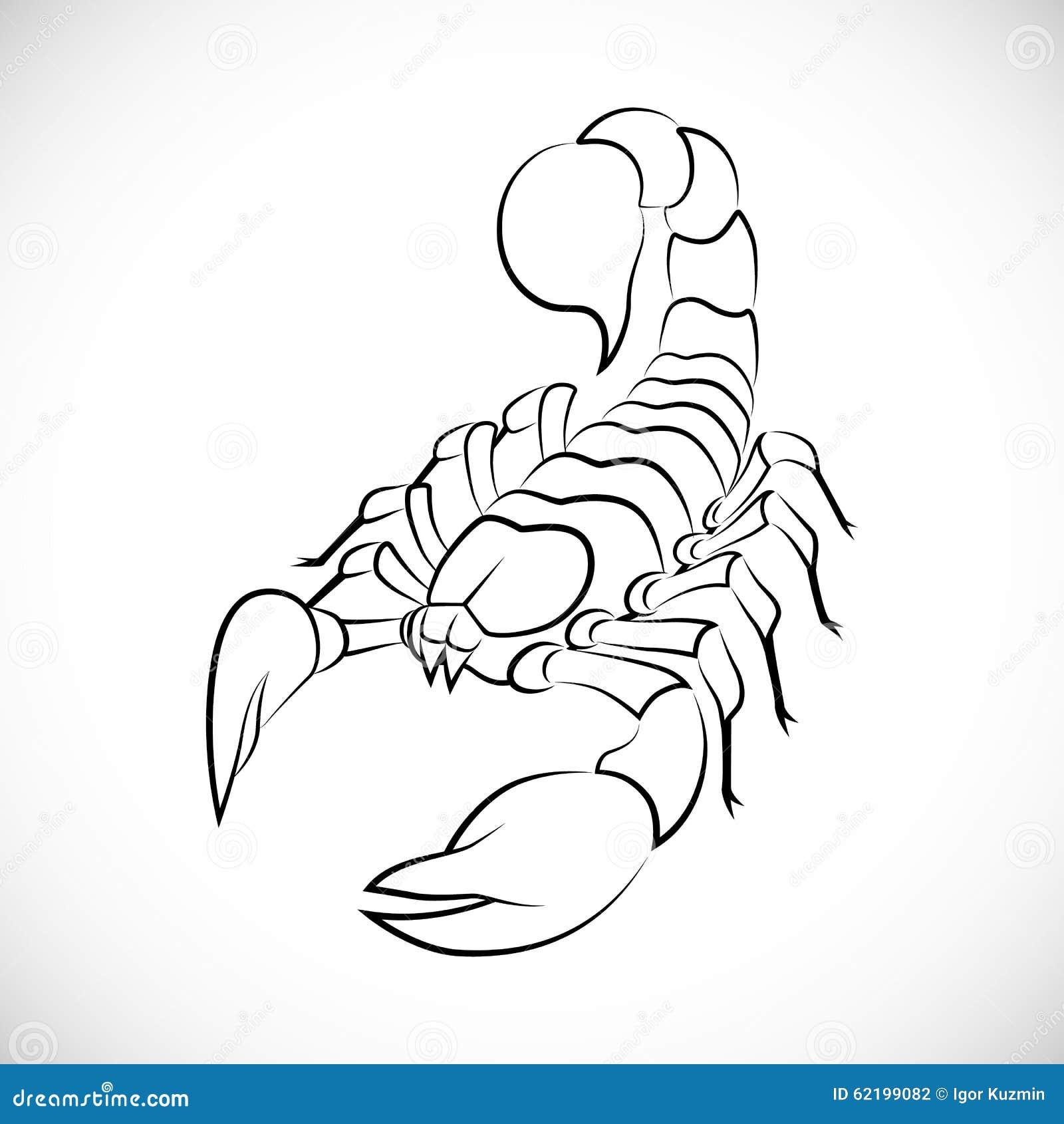 abstrakter skorpion vektor abbildung illustration von