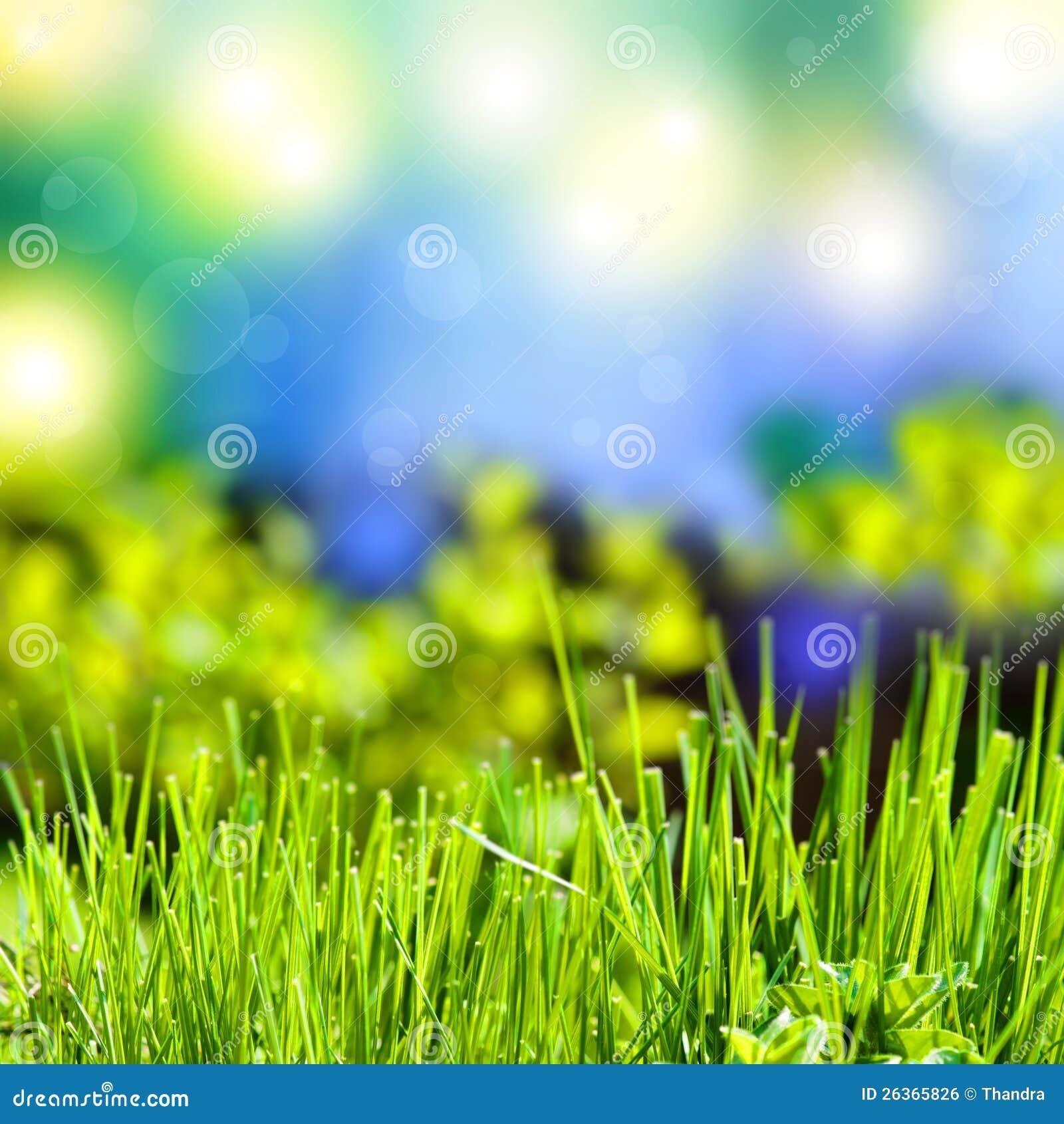 Abstrakter Sommerhintergrund mit Gras