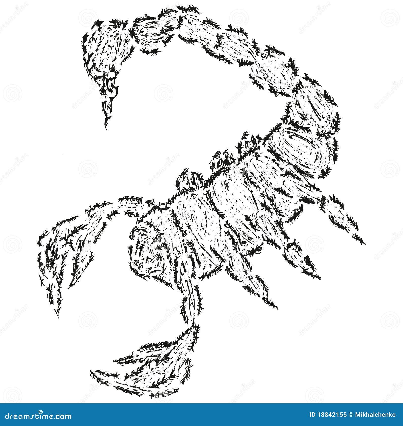 Abstrakter Stilisiert B W Skorpion Vektor Abbildung Illustration