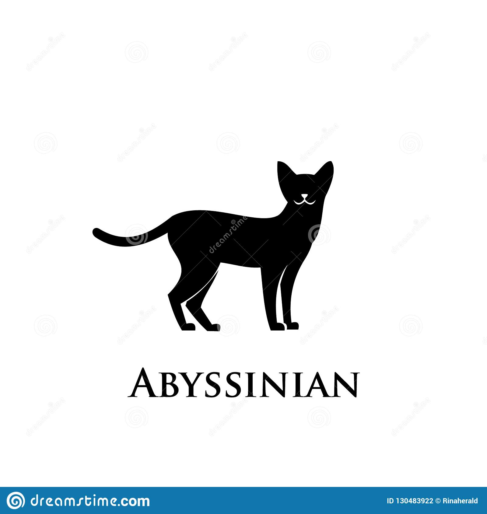 Abyssinian Cat Black And White
