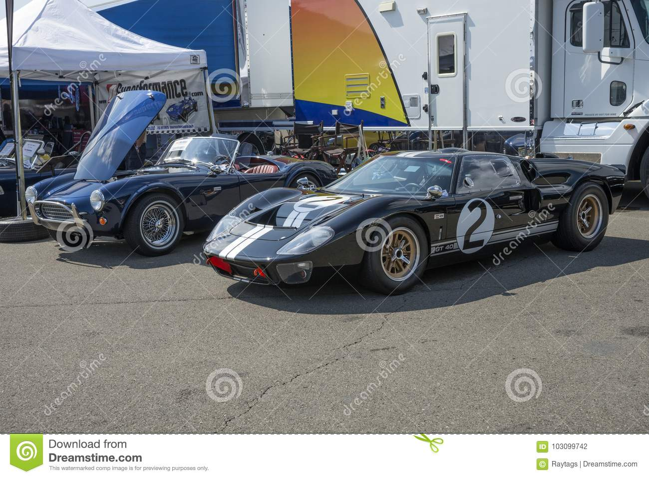 Ac Cobra And Ford Gt  In Display