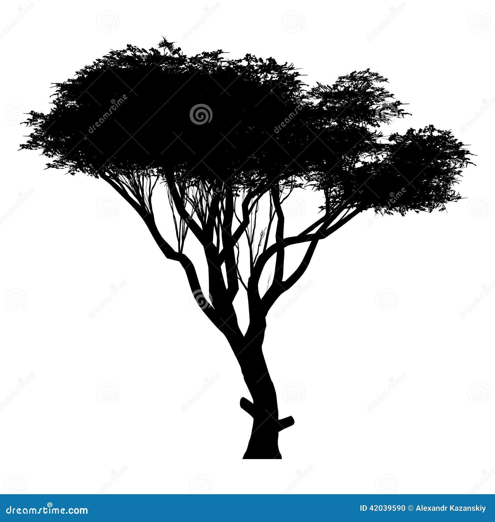 acacia-tree-silhouette-white- ...