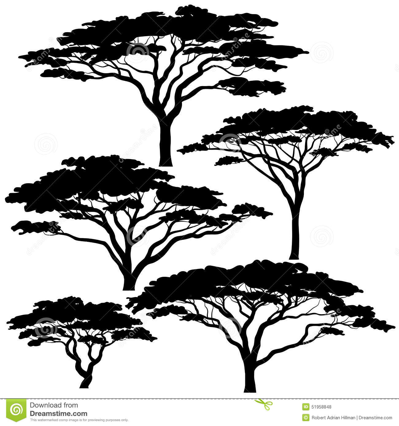 Set of eps8 editable vector silhouettes of acacia trees.